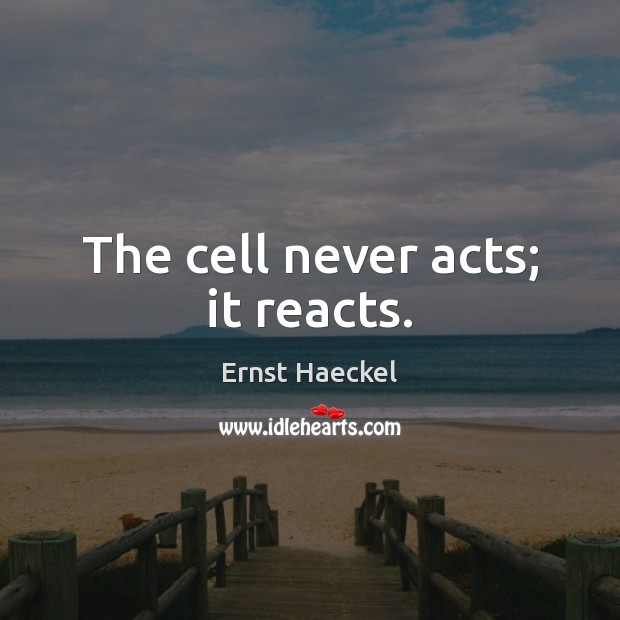 Image, The cell never acts; it reacts.