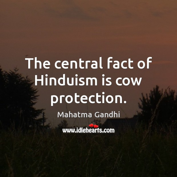 Image, The central fact of Hinduism is cow protection.
