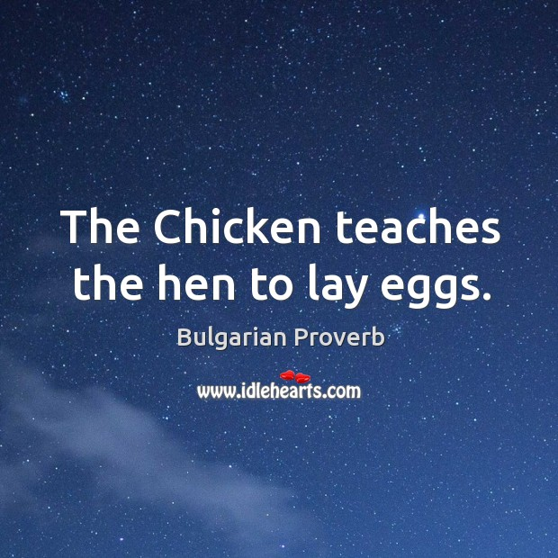 The chicken teaches the hen to lay eggs. Bulgarian Proverbs Image