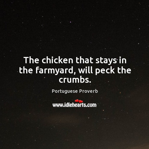 Image, The chicken that stays in the farmyard, will peck the crumbs.