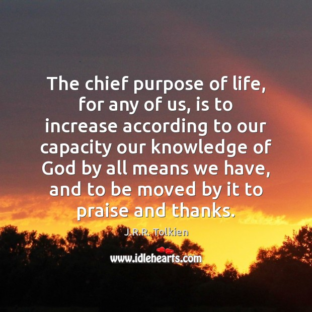 The chief purpose of life, for any of us, is to increase Image
