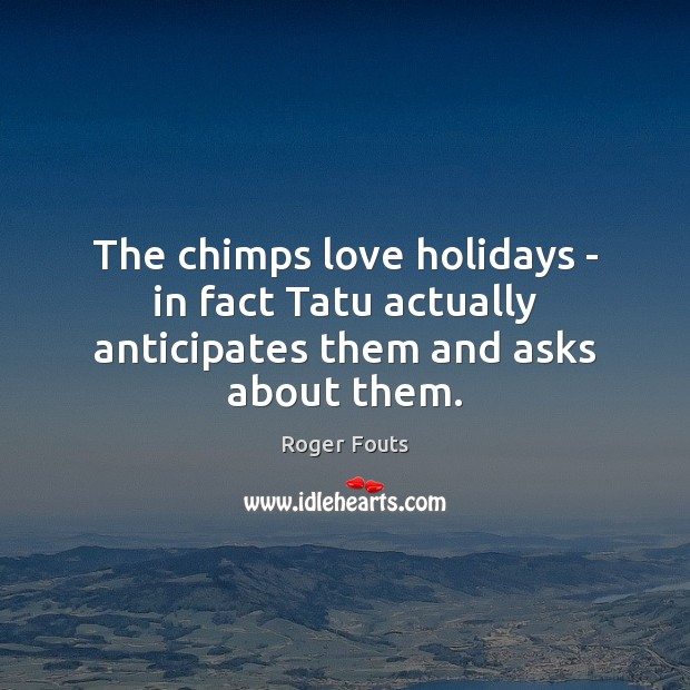 Image, The chimps love holidays – in fact Tatu actually anticipates them and asks about them.