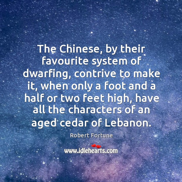 The chinese, by their favourite system of dwarfing, contrive to make it Robert Fortune Picture Quote