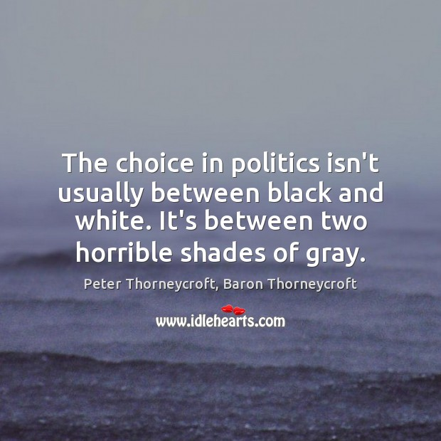 The choice in politics isn't usually between black and white. It's between Image