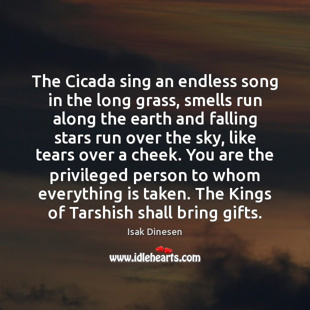 Image, The Cicada sing an endless song in the long grass, smells run