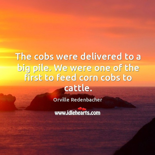 The cobs were delivered to a big pile. We were one of the first to feed corn cobs to cattle. Image