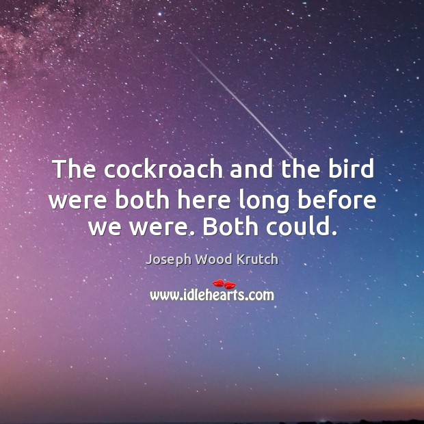The cockroach and the bird were both here long before we were. Both could. Joseph Wood Krutch Picture Quote