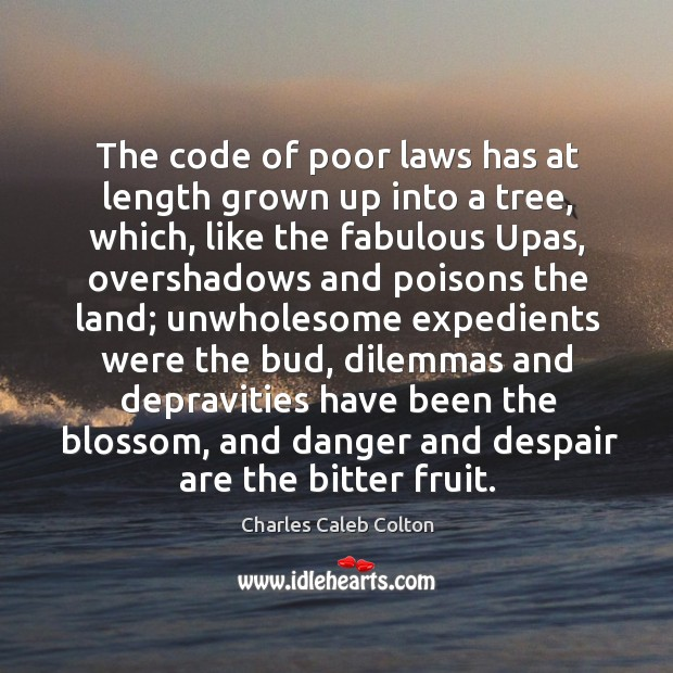The code of poor laws has at length grown up into a Image