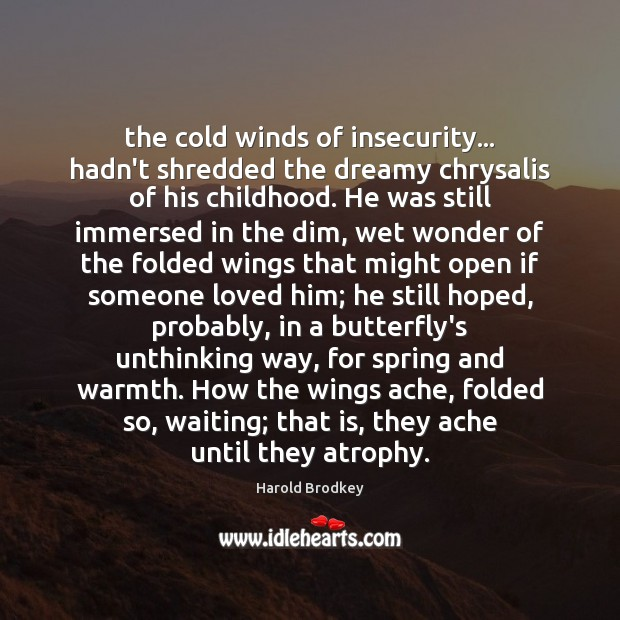 The cold winds of insecurity… hadn't shredded the dreamy chrysalis of his Image