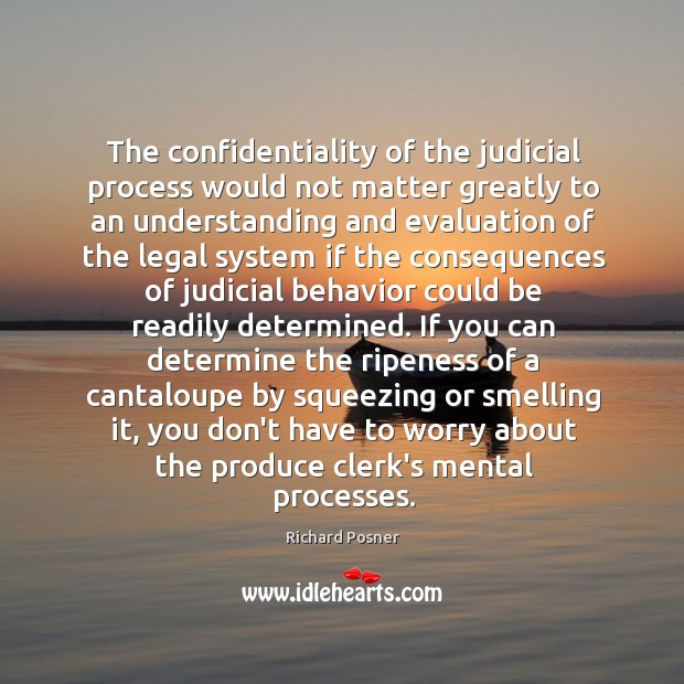 The confidentiality of the judicial process would not matter greatly to an Richard Posner Picture Quote