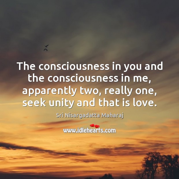 The consciousness in you and the consciousness in me, apparently two, really Sri Nisargadatta Maharaj Picture Quote