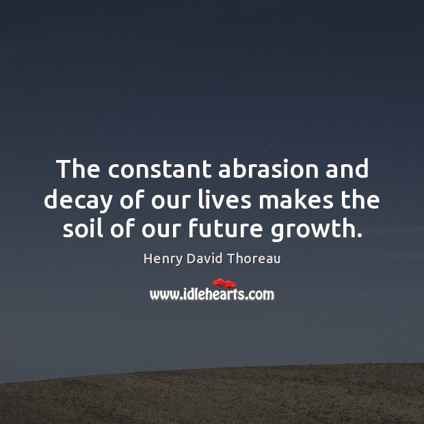The constant abrasion and decay of our lives makes the soil of our future growth. Image