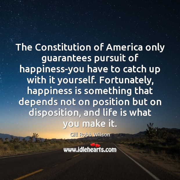 The Constitution of America only guarantees pursuit of happiness-you have to catch Image