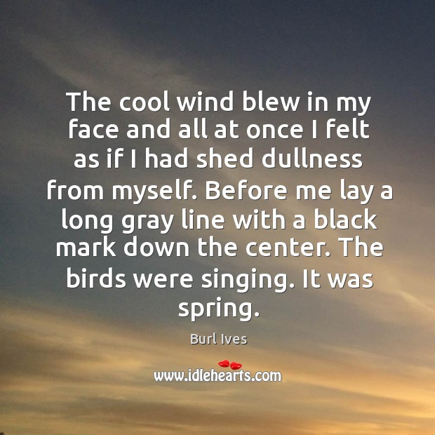 The cool wind blew in my face and all at once I felt as if I had shed dullness from myself. Image