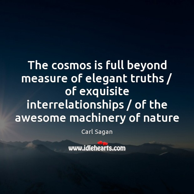 Image, The cosmos is full beyond measure of elegant truths / of exquisite interrelationships /