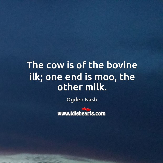 The cow is of the bovine ilk; one end is moo, the other milk. Image