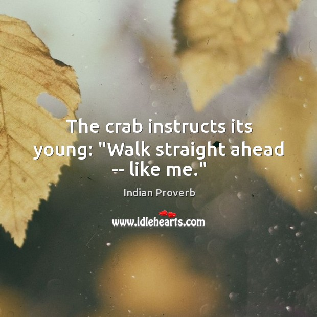 """The crab instructs its young: """"walk straight ahead — like me."""" Image"""