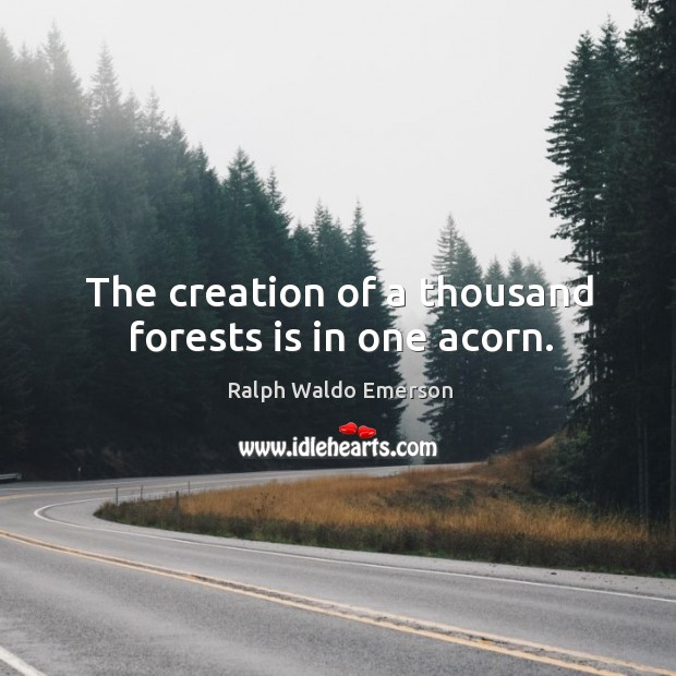 The creation of a thousand forests is in one acorn. Image