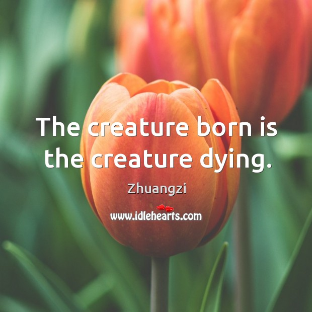The creature born is the creature dying. Image