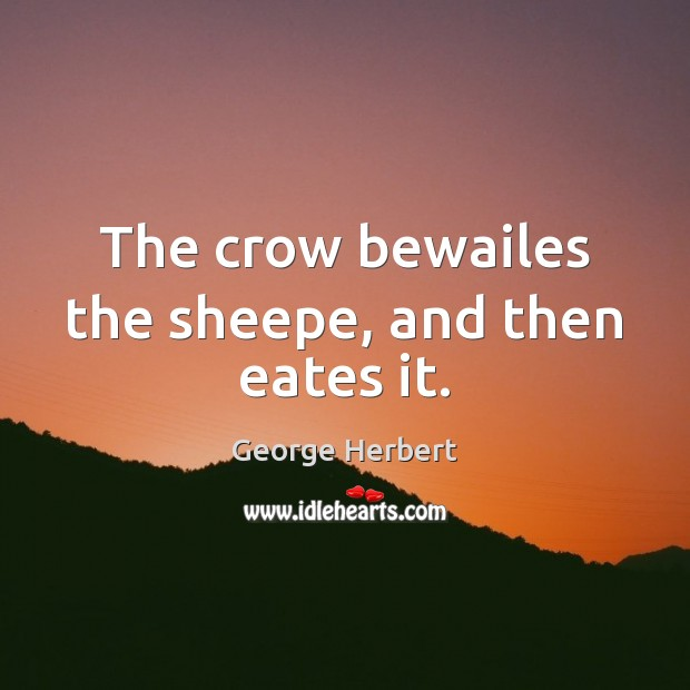 The crow bewailes the sheepe, and then eates it. Image
