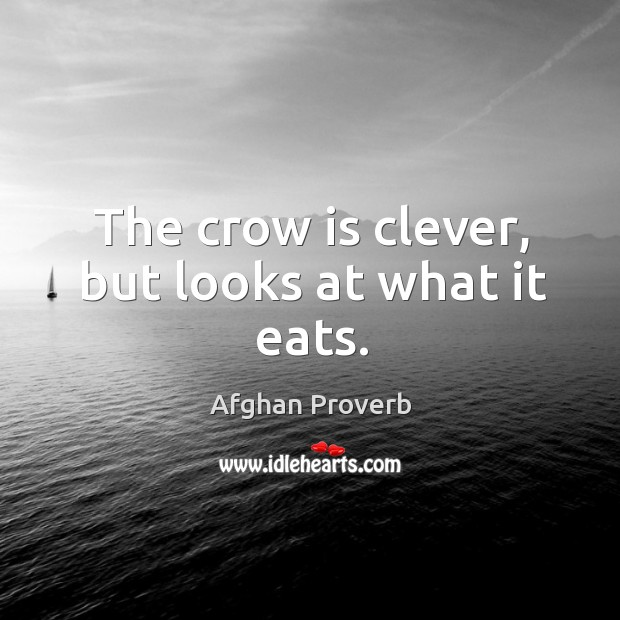 The crow is clever, but looks at what it eats. Afghan Proverbs Image