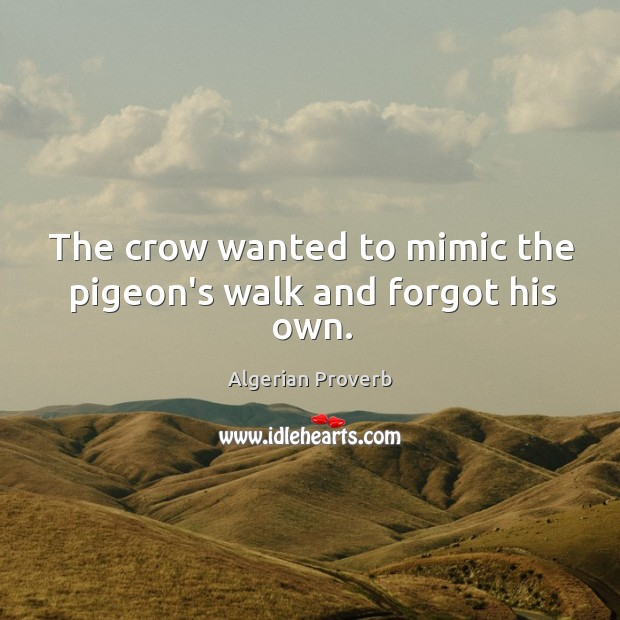 The crow wanted to mimic the pigeon's walk and forgot his own. Algerian Proverbs Image