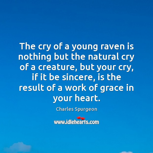 Image, The cry of a young raven is nothing but the natural cry