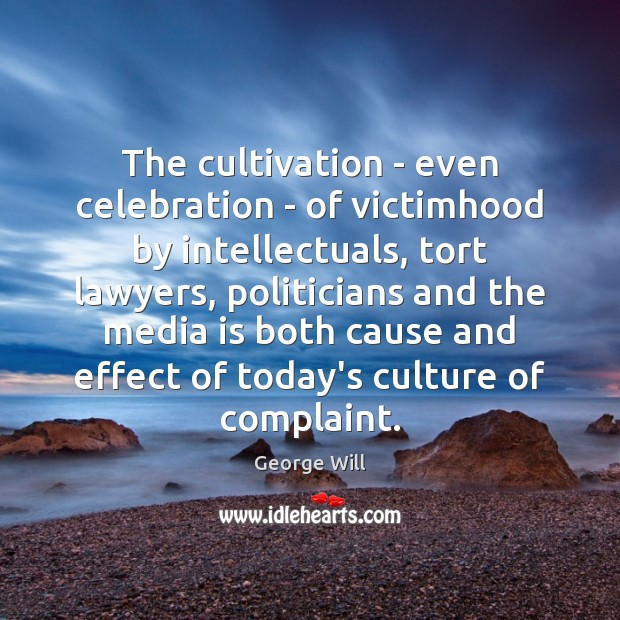 Image, The cultivation – even celebration – of victimhood by intellectuals, tort lawyers,