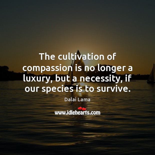 The cultivation of compassion is no longer a luxury, but a necessity, Image
