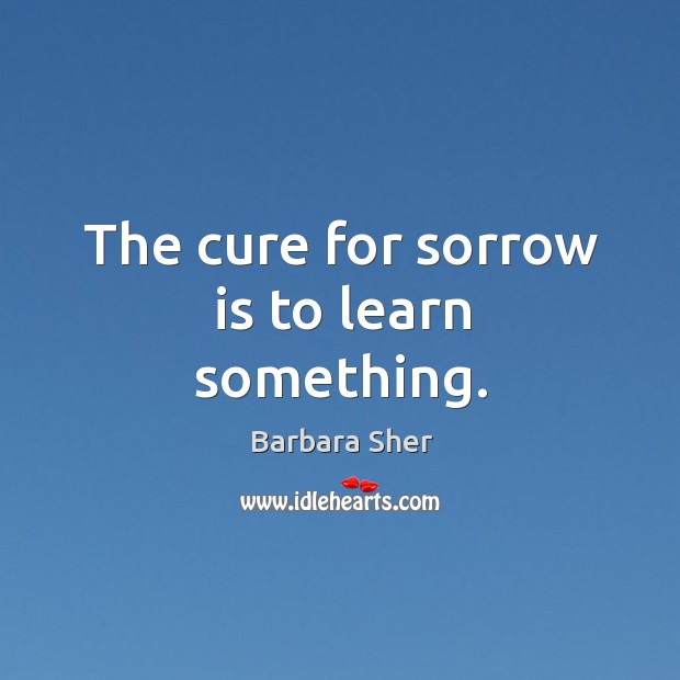 The cure for sorrow is to learn something. Image