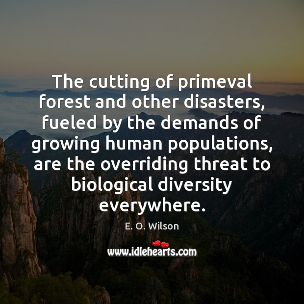 The cutting of primeval forest and other disasters, fueled by the demands E. O. Wilson Picture Quote