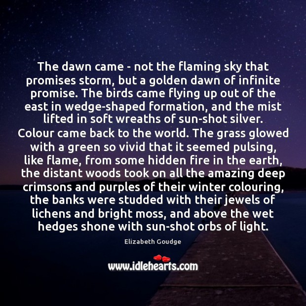 Elizabeth Goudge Picture Quote image saying: The dawn came – not the flaming sky that promises storm, but