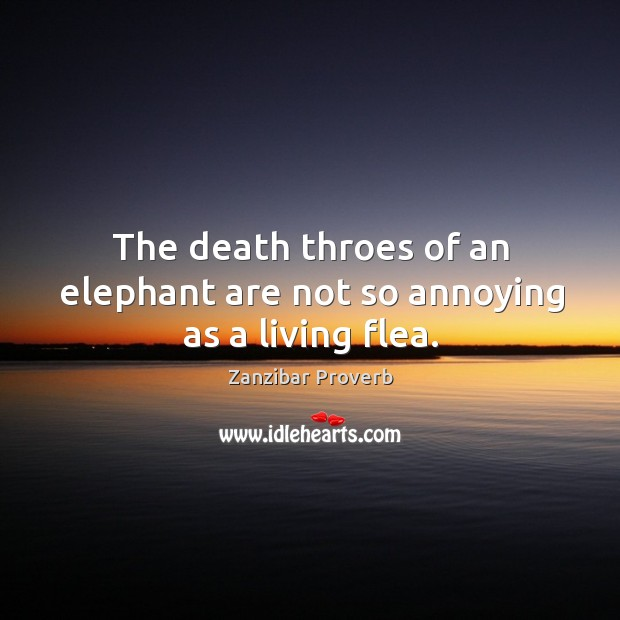 The death throes of an elephant are not so annoying as a living flea. Zanzibar Proverbs Image