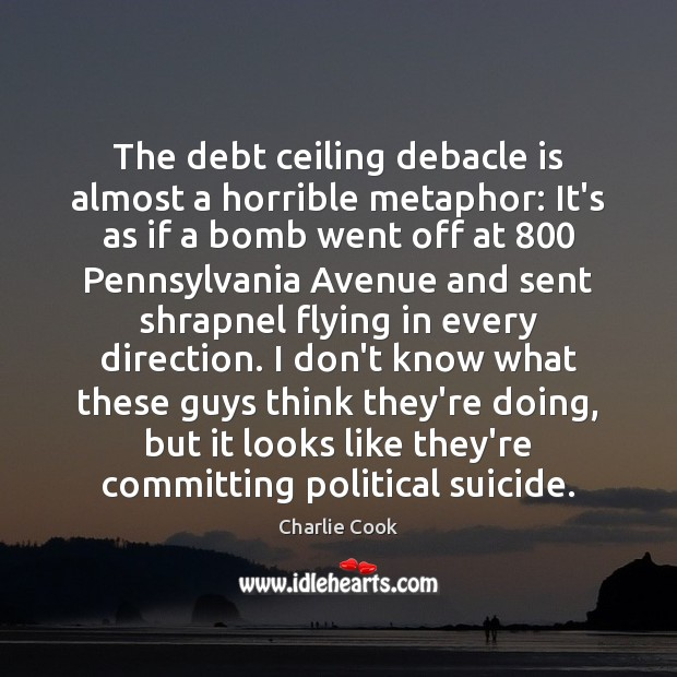 The debt ceiling debacle is almost a horrible metaphor: It's as if Image