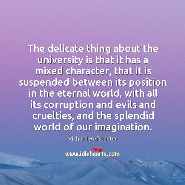The delicate thing about the university is that it has a mixed character, that it is suspended between Richard Hofstadter Picture Quote