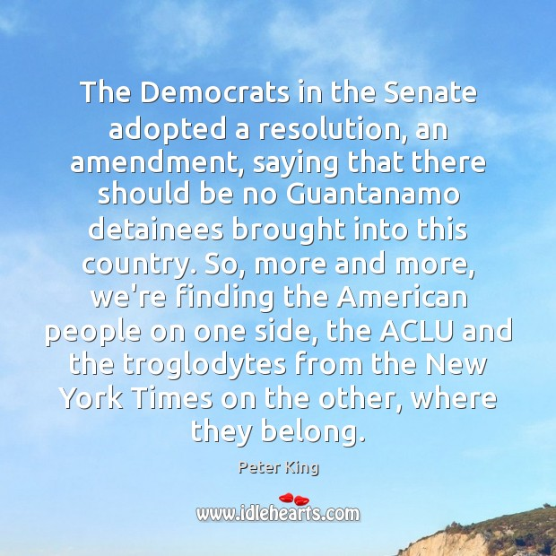 The Democrats in the Senate adopted a resolution, an amendment, saying that Peter King Picture Quote