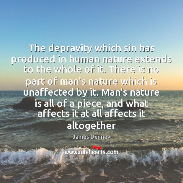 The depravity which sin has produced in human nature extends to the Image