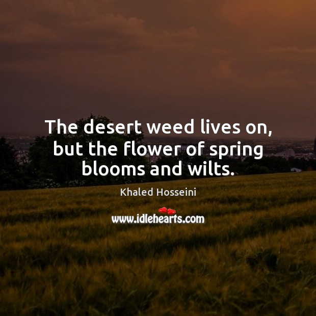 The desert weed lives on, but the flower of spring blooms and wilts. Spring Quotes Image