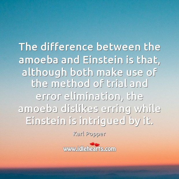 Image, The difference between the amoeba and Einstein is that, although both make