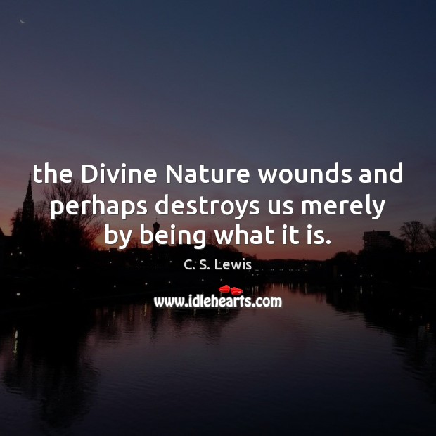 The Divine Nature wounds and perhaps destroys us merely by being what it is. Image