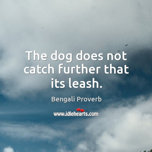 The dog does not catch further that its leash. Bengali Proverbs Image