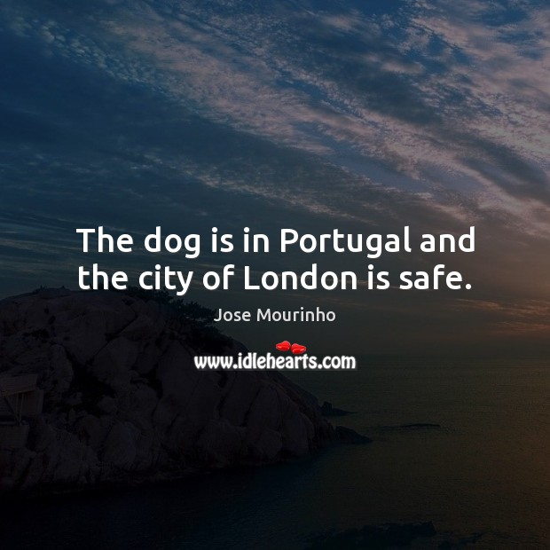 Image, The dog is in Portugal and the city of London is safe.