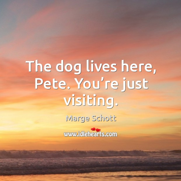 The dog lives here, pete. You're just visiting. Image