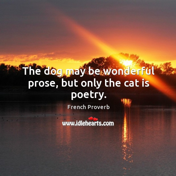 Image, The dog may be wonderful prose, but only the cat is poetry.