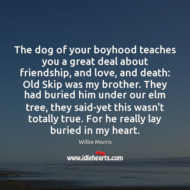 Image, The dog of your boyhood teaches you a great deal about friendship,