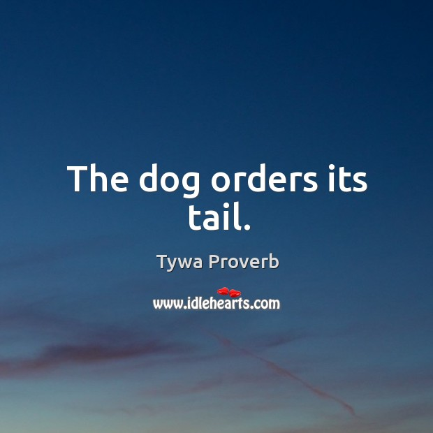 The dog orders its tail. Tywa Proverbs Image