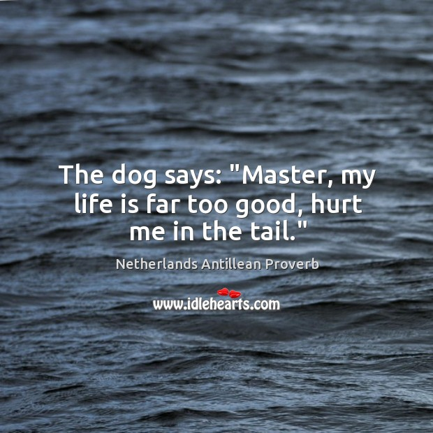 """The dog says: """"master, my life is far too good, hurt me in the tail."""" Netherlands Antillean Proverbs Image"""