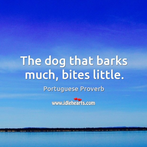 Image about The dog that barks much, bites little.