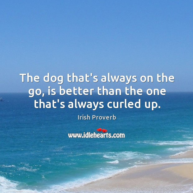 Image, The dog that's always on the go, is better than the one that's always curled up.