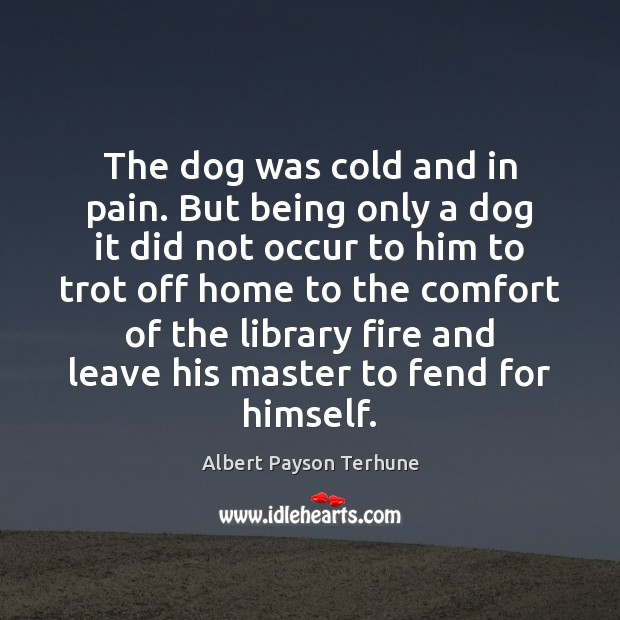 Image, The dog was cold and in pain. But being only a dog